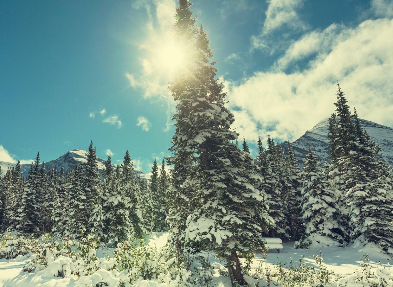 Winter in Glacier Park, Montana, USA