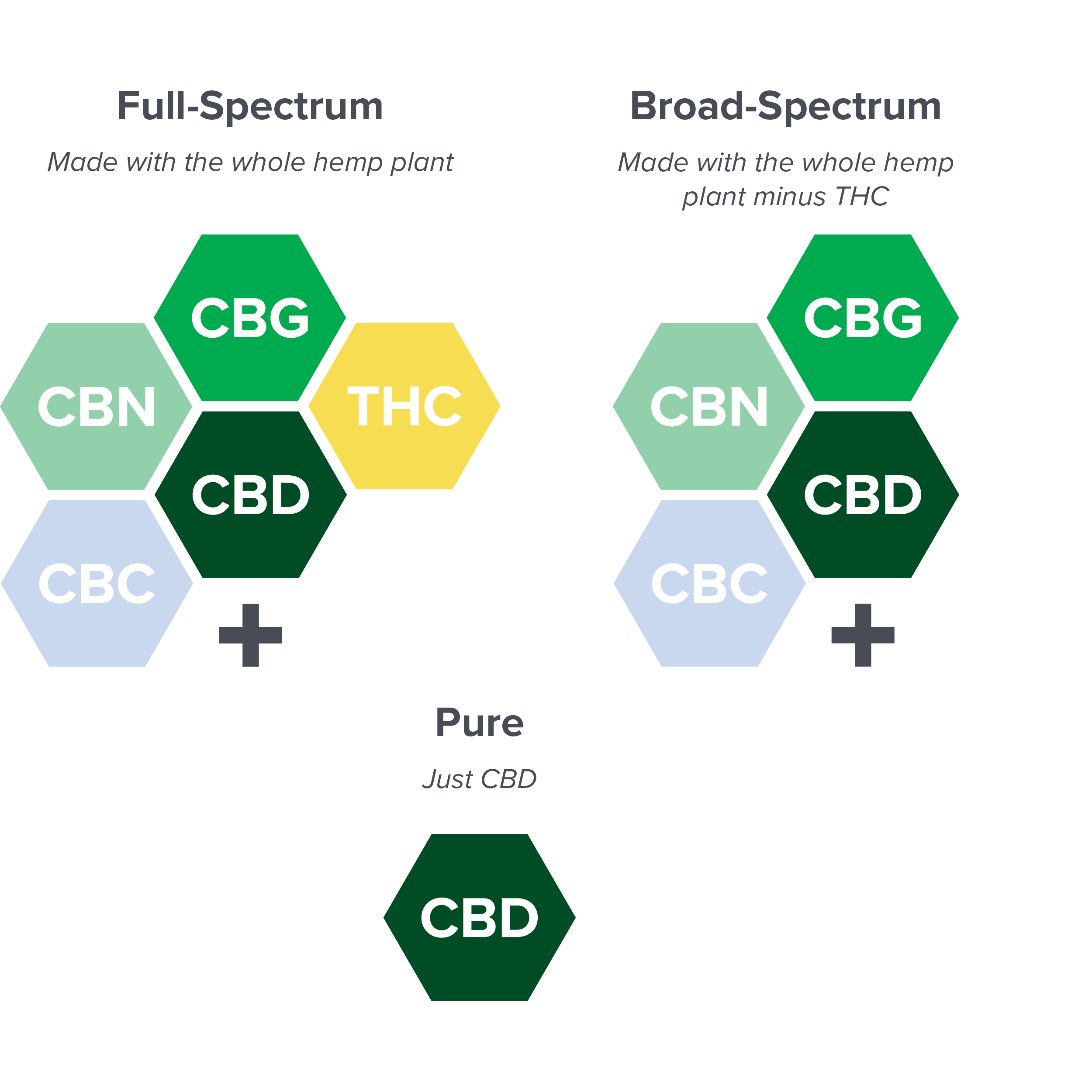 Hexagonal charts explaining the property components of full spectrum, broad spectrum, and pure CBD.