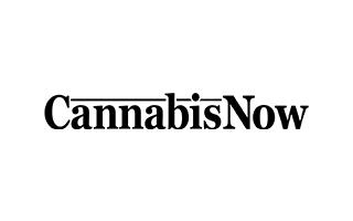 Cannabis-now Card Logo
