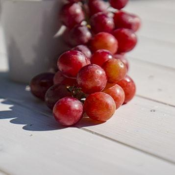 Grape Seed Oil Ingredient - CBD Gummies