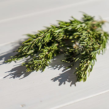 Sprigs of rosemary on a wooden surface.